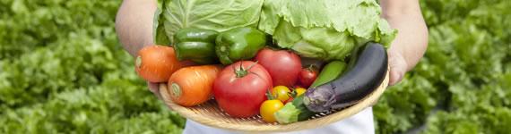 農作物共済 バナー